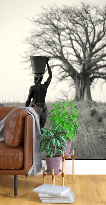 The porter and the baobab