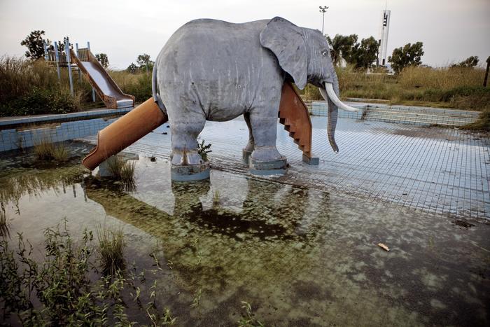 L Elephant De Mobutu
