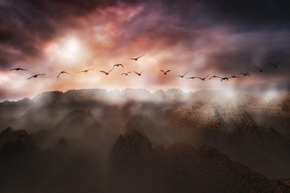 La Longue Migration