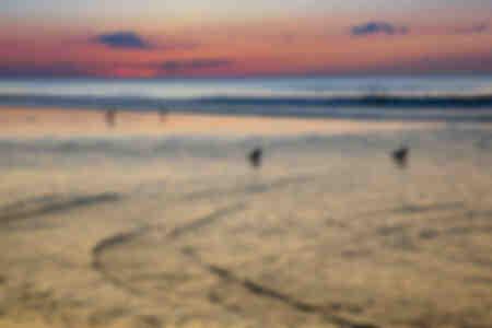 Reflexiones de colores sobre la playa con gaviotas