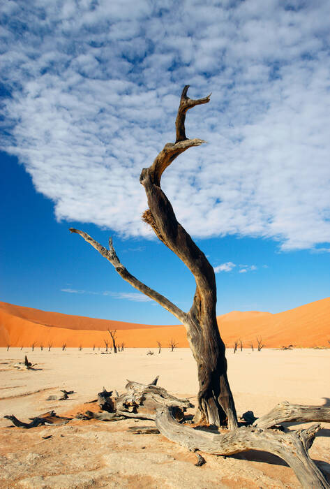 namibie paysage