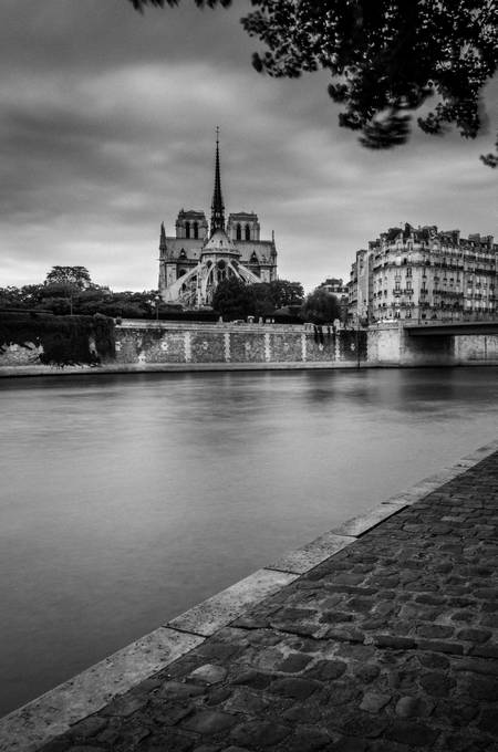 Notre Dame de Paris III
