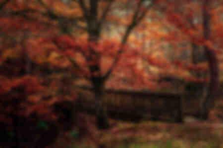 Passage im Herbst