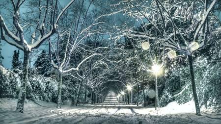 Mougins sous la neige