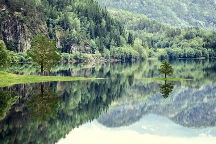 Paysage Nature De Norvege
