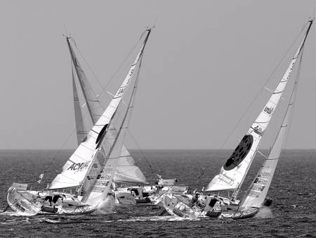 Sailing regatta 02