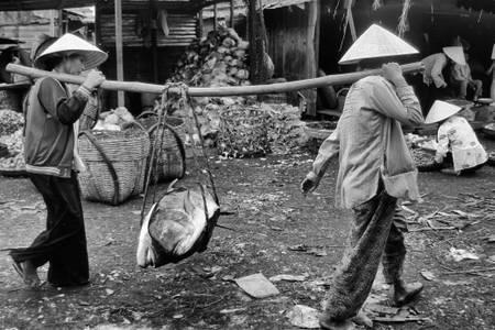 Vietnam 025nb