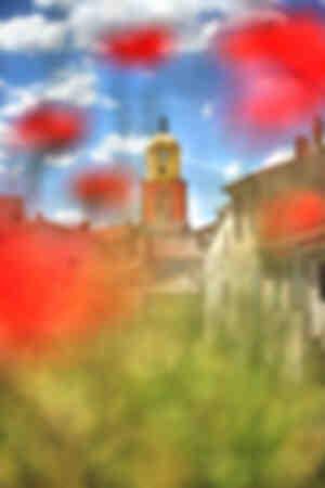 Saint Tropez et les coquelicots