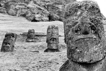 Nurserie de Moai