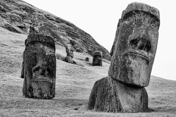 Nurserie De Moai   3