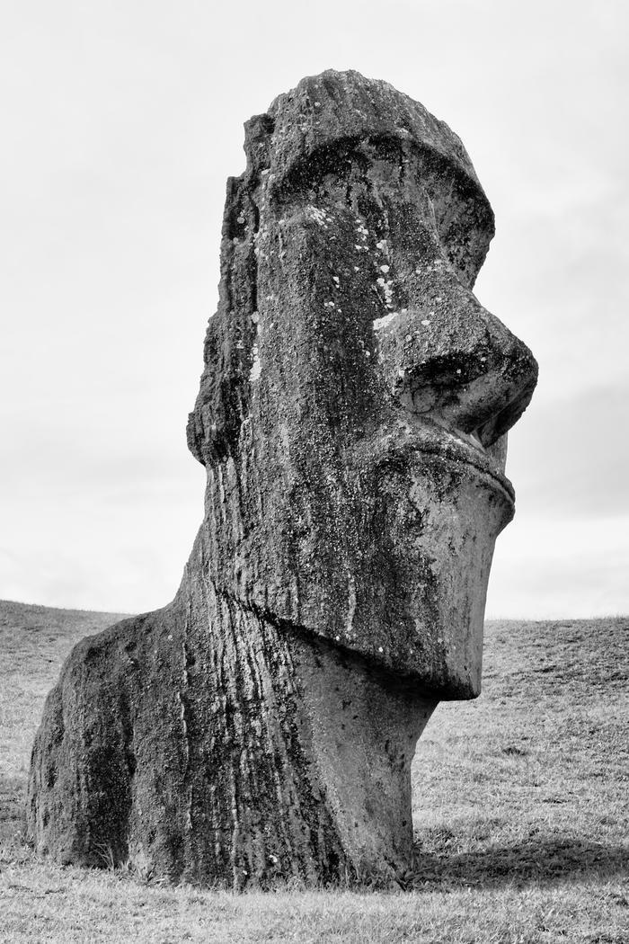 Nurserie De Moai 2