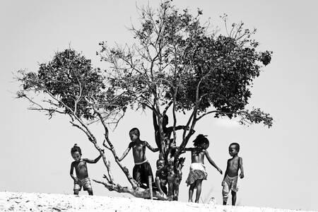 Les enfants de la dune