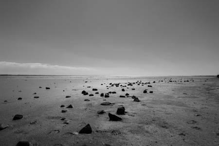 Deserto della Camargue