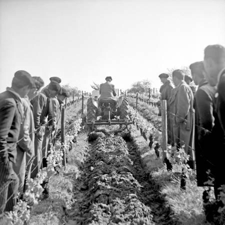 Labour mécanisé en Gironde