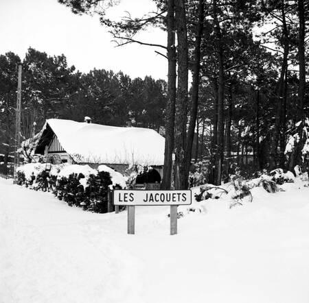 Le Bassin d'Arcachon sous la neige en février 1956