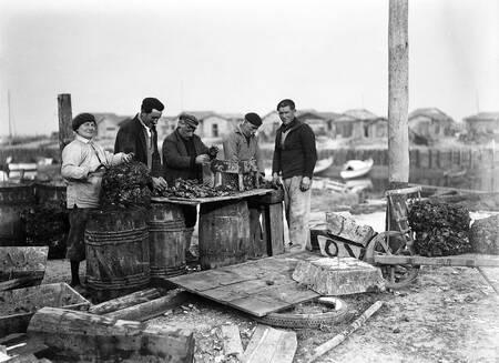 Ostréiculteurs sur le bassin d'Arcachon