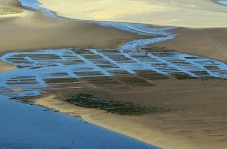 Vue aérienne des parcs à huîtres du bassin d Arcachon