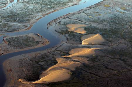 Aerial view of the Arcachon basin at low tide