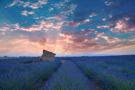 Sunset on Provence