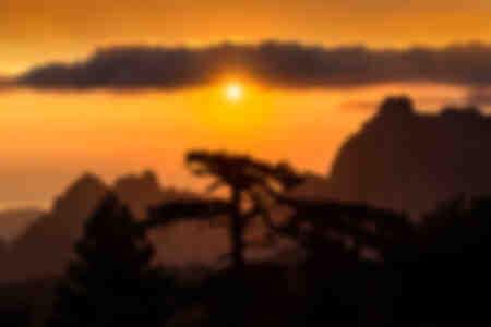 Bavella needles at sunrise