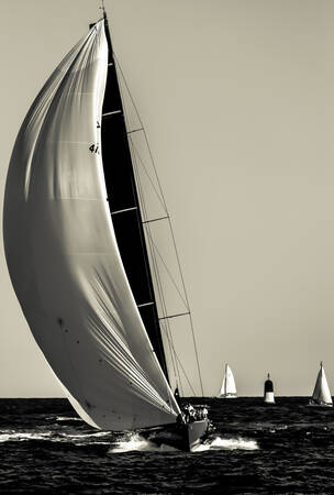The Sails of Saint Tropez 7
