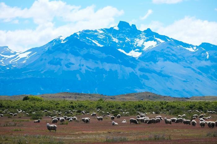 Montagne Argentine