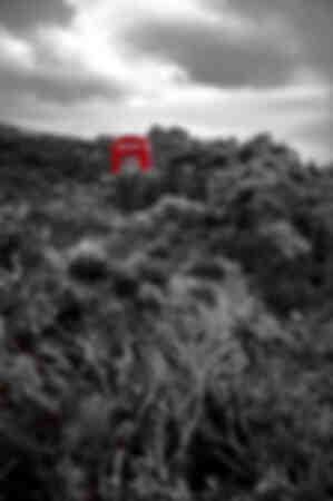 Wild red cabin