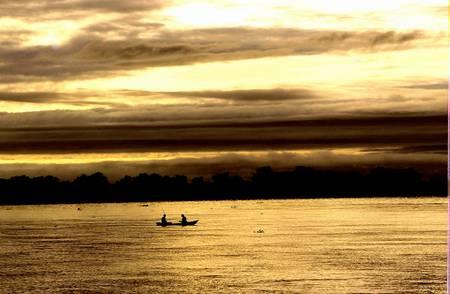 Marais du Pantanal Bresil