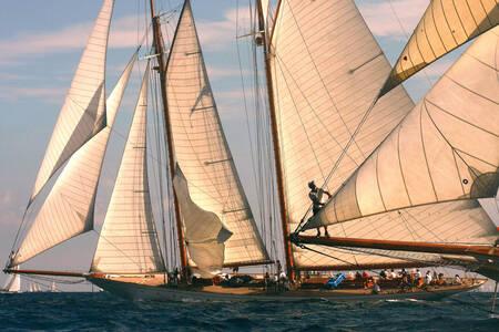 Sail of St Tropez 3