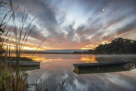 the vioreau pond 4