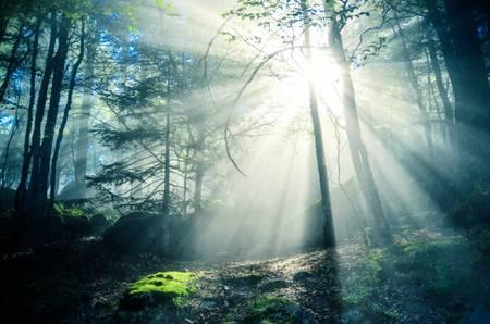La lumière pénétrante