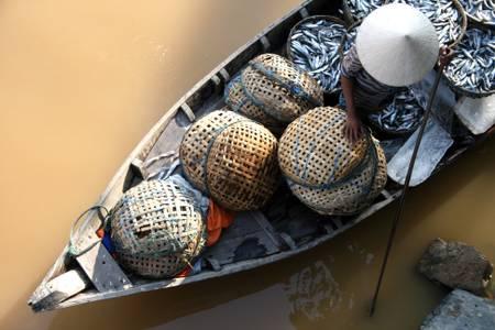 Le pêcheur du mékong
