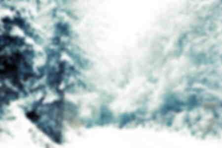 vintersnö i skogen
