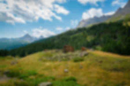 The Alps 4