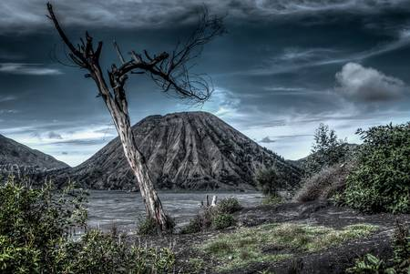 Le volcan Bromo