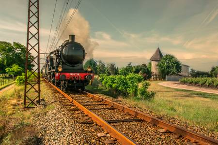 Steam locomotive in the middle of the Médoc vineyards