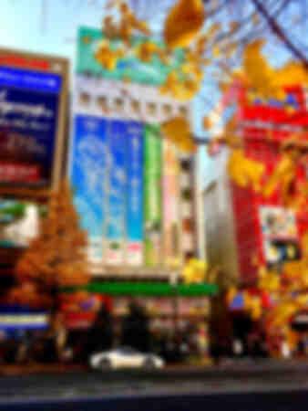 Akihabara City