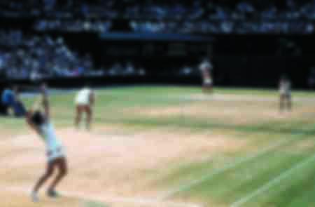 Double dames du tournoi de Wimbledon 1976