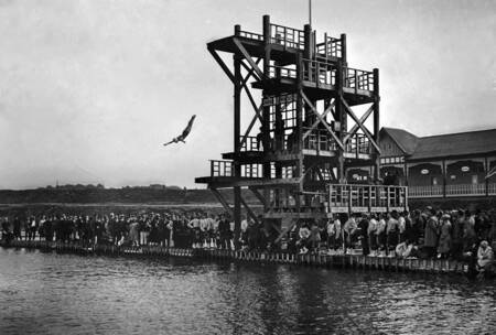 High flying women diving - Olympic Games 1920