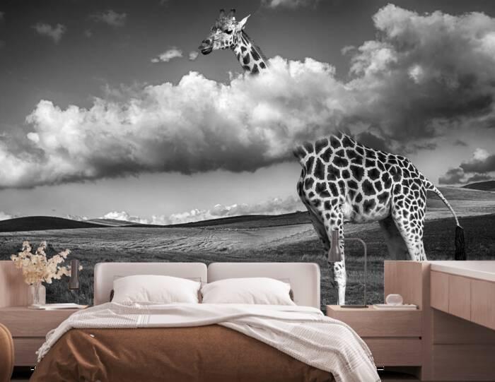 Girafe au dessus des nuages
