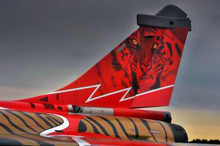 Empennage of a Tiger Rafale