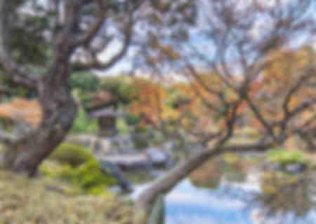 Ukiyo-e Feeling