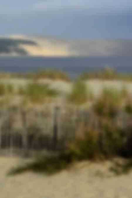 Die Düne des Pilat