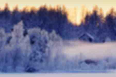 La forêt boréale au bord de la rivière Lule