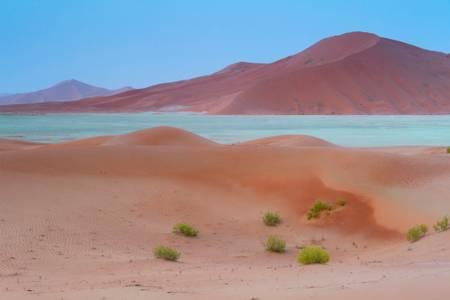 The dunes of the Empty Quarter