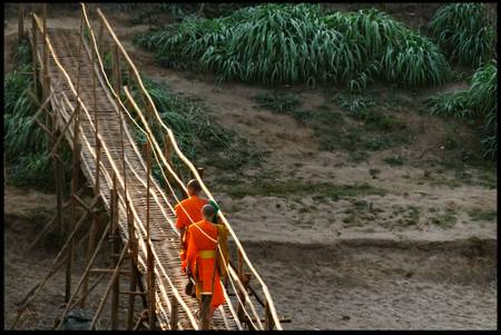 Bamboo bridge - 2