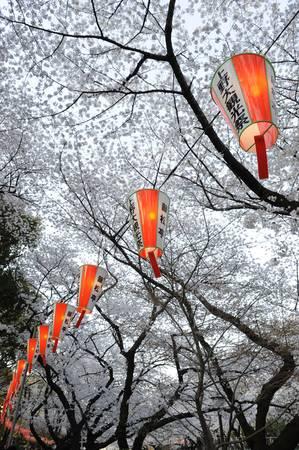 TOKYO-GIGANTESQUE ET MINUSCULE