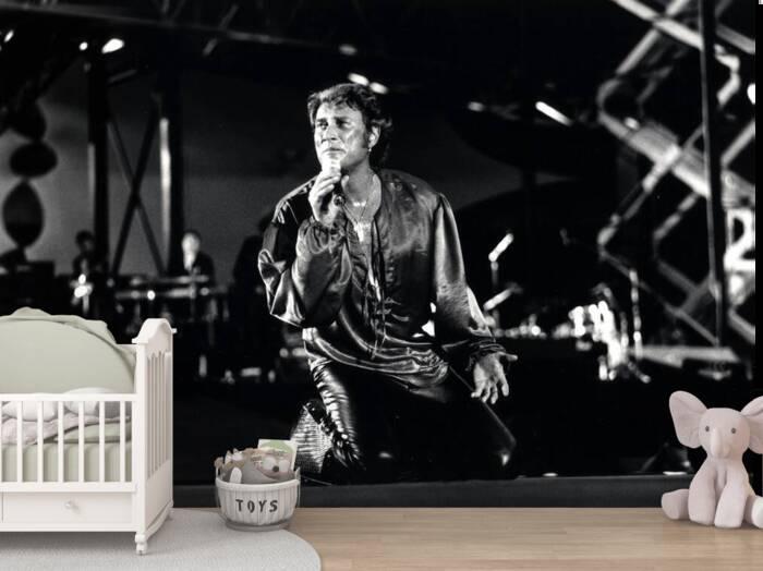 Johnny Hallyday en concierto