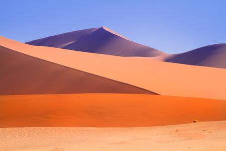 Couleurs du désert en Namibie