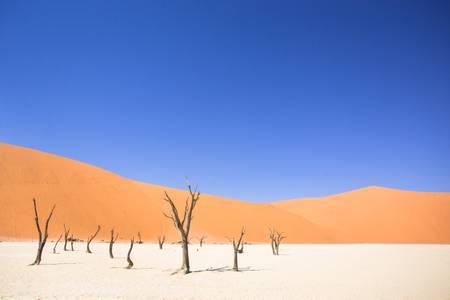 Desert landscape in Namibia Africa